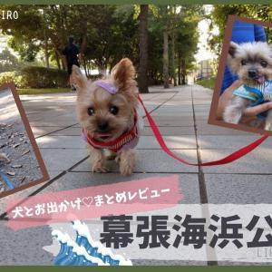 《犬とお出かけ》千葉県立 幕張海浜公園 まとめレビュー