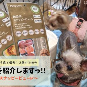 【購入品紹介&レビュー】シニア犬も安心お菓子!カインズ Pet's One スナッピーピューレ 各3種類!!
