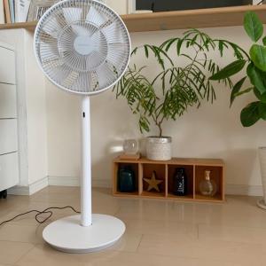 BALMUDAの扇風機 自然の風が気持ちいい!
