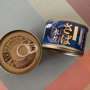 ラタティユでサバ缶消費