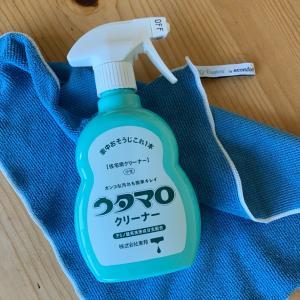 ウタマロでシャワーホースのお掃除