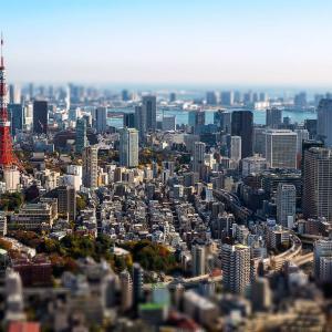 【ゆるっと日記】今日は出張で東京にてお泊まり❤