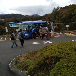スタンダードツインでも広くてオーシャンビューで大満足 (DHC赤沢温泉郷旅行記(2)11/28~29)