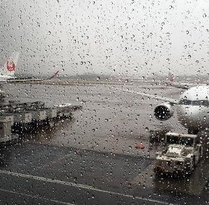 今日の羽田空港は雨に煙っていた