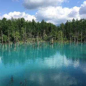 美瑛の「青い池」のベストシーズンは?