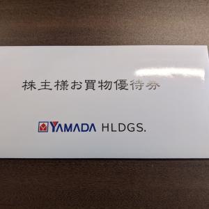 ヤマダホールディングス (9831)優待