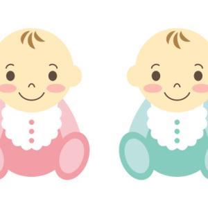 双子を出産する時にもらえるお金は?~ワーママの所得補償編~