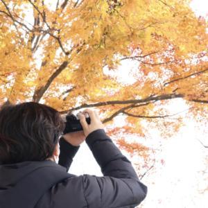【紅葉狩り】高尾山登ってきた!
