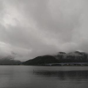 白鳥の湖? 〜河口湖