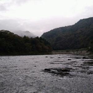 週末ぶっ通し釣行②〜犀川トラウト Xデー