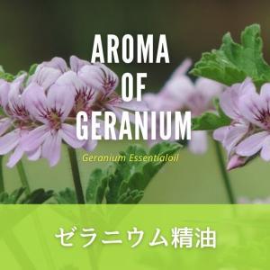 【アロマの話】ゼラニウム精油の効果効能とおすすめの使い方!