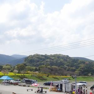 しまばら火張山花公園(旧しまばら芝桜公園) 長崎県島原市
