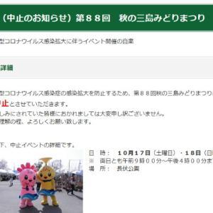☆おもちゃカボチャコンテスト☆