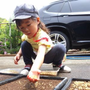 ☆籾と彼女☆