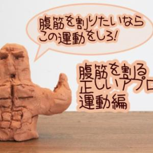 【腹筋運動不要?】腹筋を割る正しいアプローチ運動編【腹筋を割るシリーズ4】