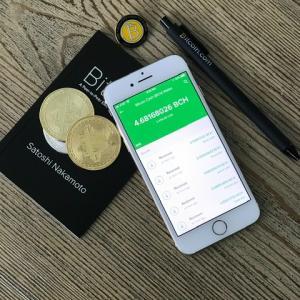 【気になる仮想通貨】ビットコインの他に買い足した通貨は?