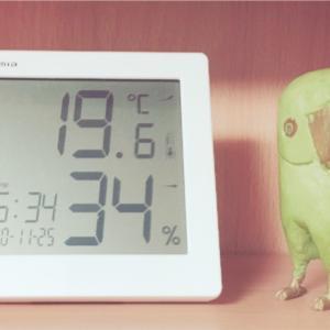暑いんだか寒いんだか
