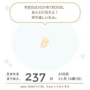 6w1d☆大学病院の産婦人科へ