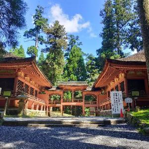 一生に一度は行きたい比叡山延暦寺にて。1200年以上もの歴史を感じました。。