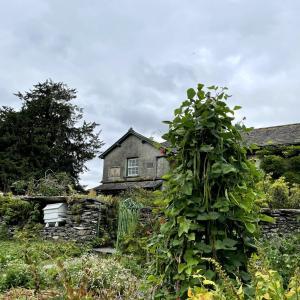イギリス【旅行】 ヒル・トップ ビアトリクス・ポターの家 Hill Top Beatrix Potter's House