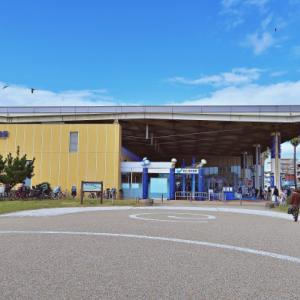 「新江ノ島水族館」の見どころ!エリアごとにご紹介