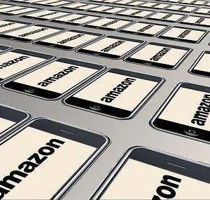 Amazonプライム30日間無料体験で象にはまった話【おすすめ】