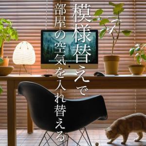 家具と植物の置き方で上手に模様替え
