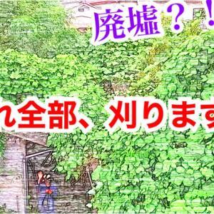 【古民家リノベ動画】20年放置?!廃墟と化した家を開拓してみたら