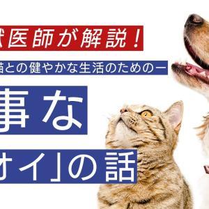 大事な「ニオイ」の話~愛犬・愛猫との健やかな生活~