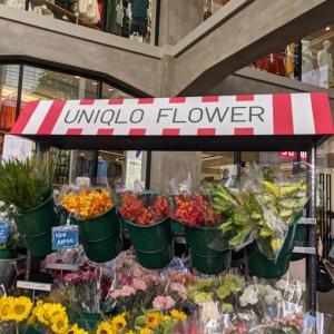 お花が安くてビックリ❗UNIQLO TOKYOで3束¥990