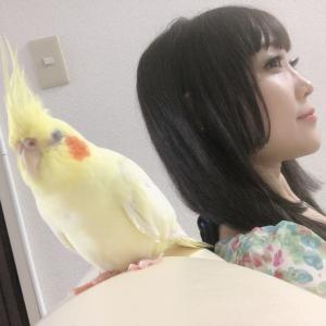 週刊☆タロットde12星座占い☆2021年8月2日〜8月8日【動画】