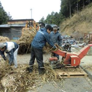 クエスト:河川のヨシ刈り