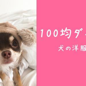 百均ダイソーで見つけた安くて可愛い犬の冬服