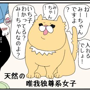 いち子 VS みーちゃん