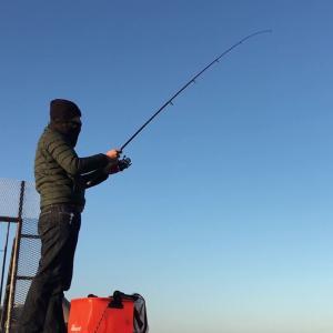 漁師さんってほんとスゴイわ! 当たり前やけど、魚のことなんでも知ってはるわ!