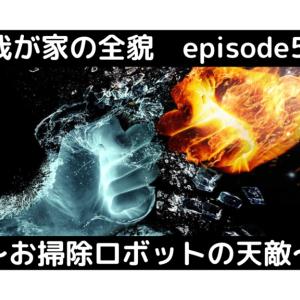 我が家の全貌 episode5 〜お掃除ロボットの天敵〜