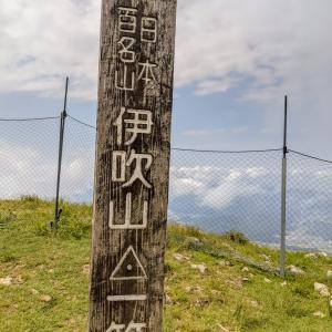 真夏に百名山の伊吹山へ登ってきました。