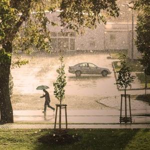 梅雨とセミリタイア生活