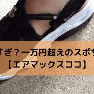 高すぎ?一万円超えのスポサン【エアマックスココ】