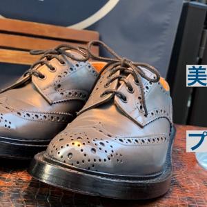 【鏡面磨き】三宮でプロの靴磨きを肴に美味しいお酒を飲もう!