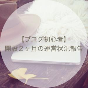 【ブログ初心者】開設2ヶ月の運営状況報告〜ひまわりと共に〜