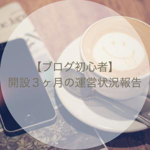 【ブログ初心者】開設3ヶ月の運営状況報告〜ひまわりと共に〜
