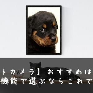 【ペットカメラ】おすすめはFURBO おやつ機能で選ぶならこれできまり