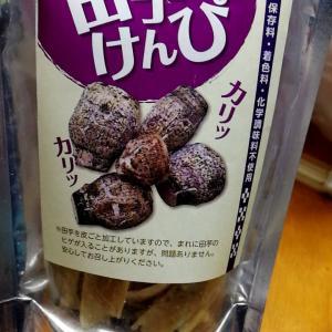 子孫繁栄の縁起物 田芋のお菓子