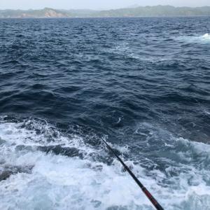 島野浦 シオフキ西