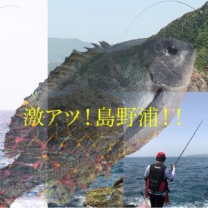 激アツ❗️島野浦シオフキ西の奥❣️