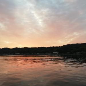 江田島へアジング