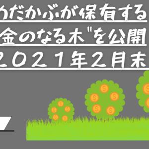 """めだかぶが保有する""""金のなる木""""を公開(2021年2月末)"""