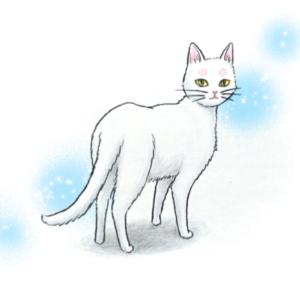 シロのこと(4)(+ シロと猫じゃらし)
