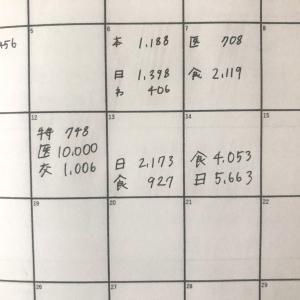 2021年に100万円貯めたい!手書き家計簿をはじめました宣言